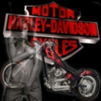 Harley Davisdon girl